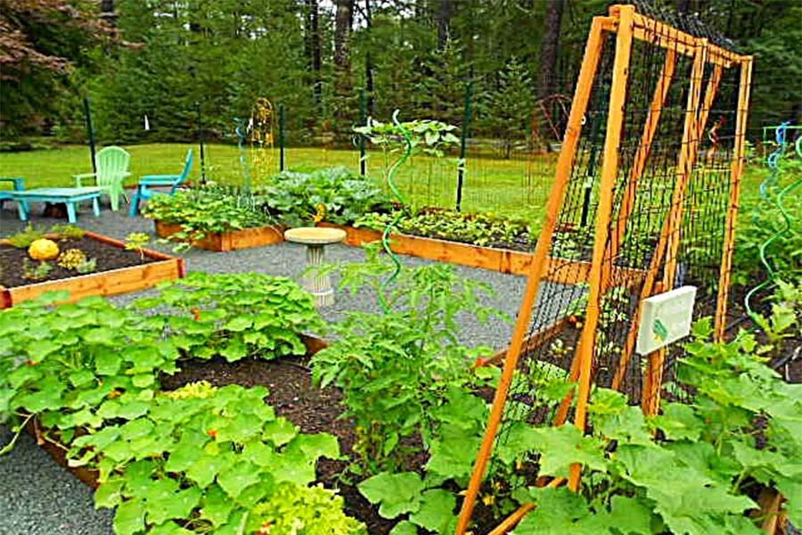 Sandy Greig\'s New York Country Style Potager Garden