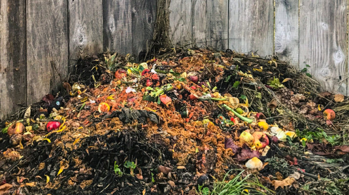 fall compost pile
