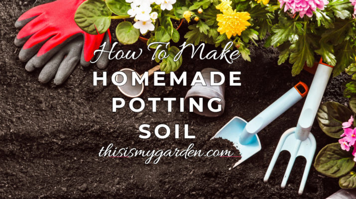 homemade potting soil