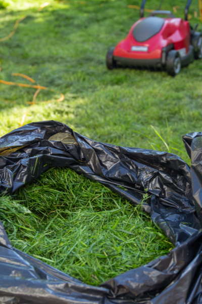 grass clippings - best mulch for flowerbeds and gardens
