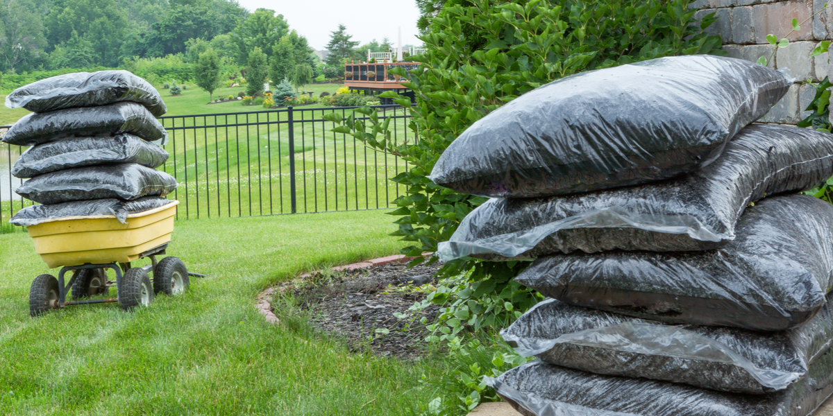 How To Select The Best Mulch For Flowerbeds And Gardens