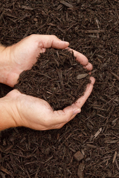 Shredded hardwood mulch - best mulch for flowerbeds