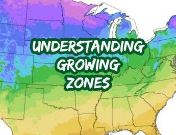 understanding growing zones