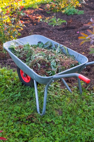 creating a spring compost pile from old plant debris
