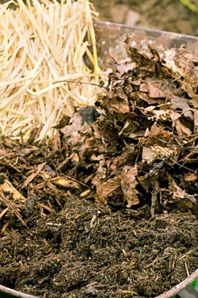 straw, compost, leaves