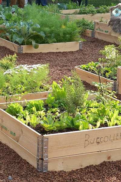 new garden tips