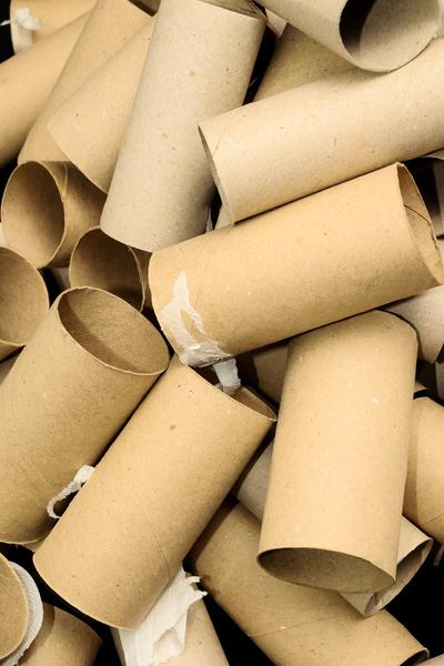cardboard rolls