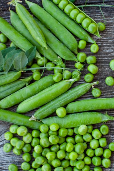 saving sugar snap pea seed