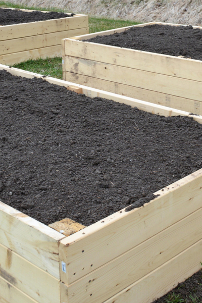 compost in raised beds