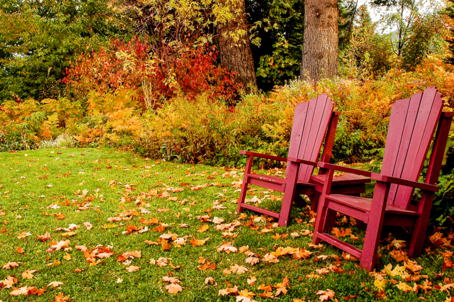 how to mow your fall lawn