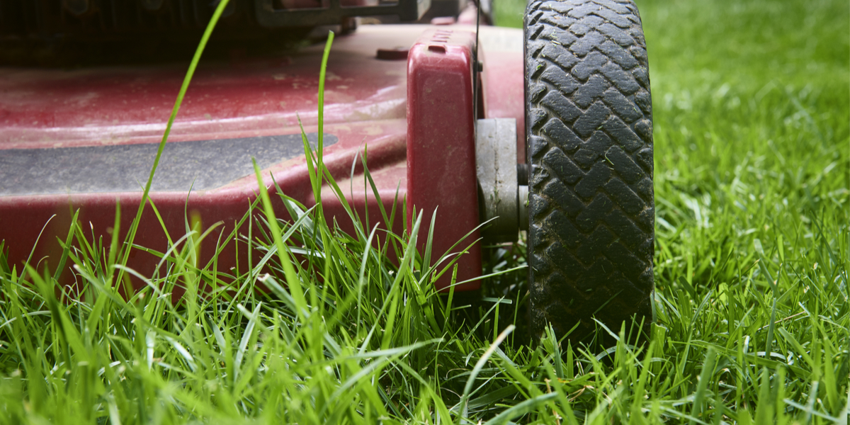 how to mow before winter