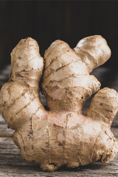 grow ginger indoors