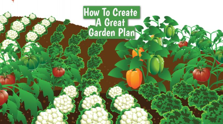 how to creata a garden plan