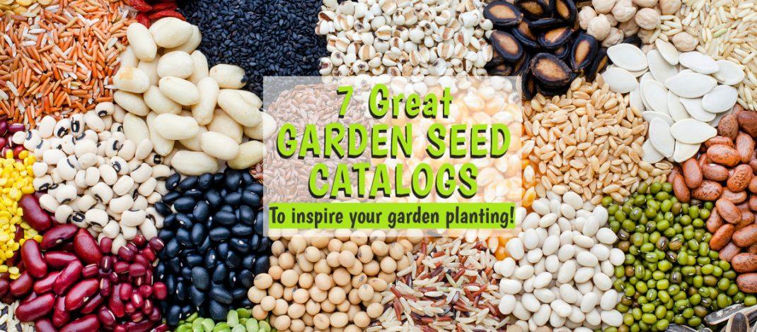 garden seed catalogs