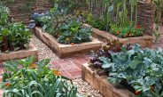 How To Grow In Raised Beds – 5 Simple Secrets To Raised Bed Success!