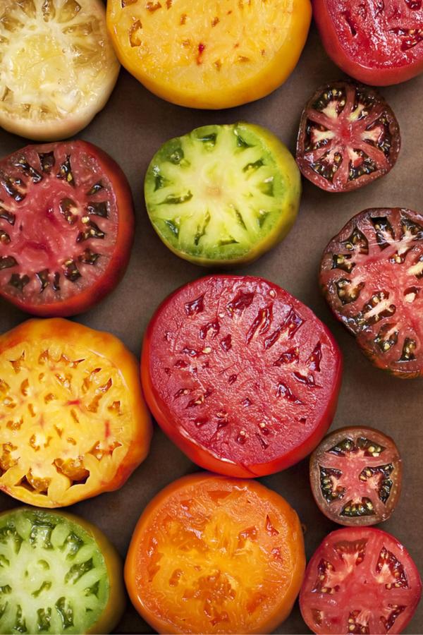 3 unique tomato plants