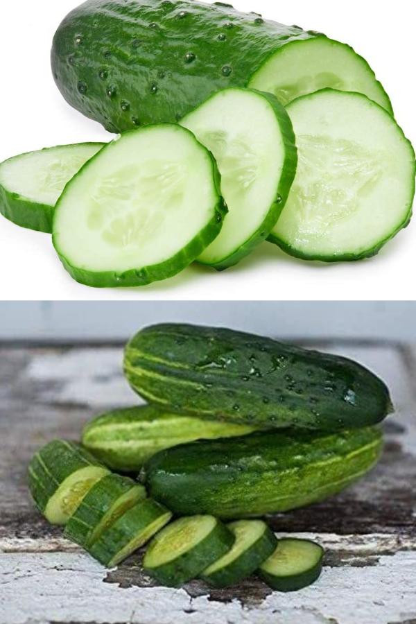 Spacemaster Cucumber
