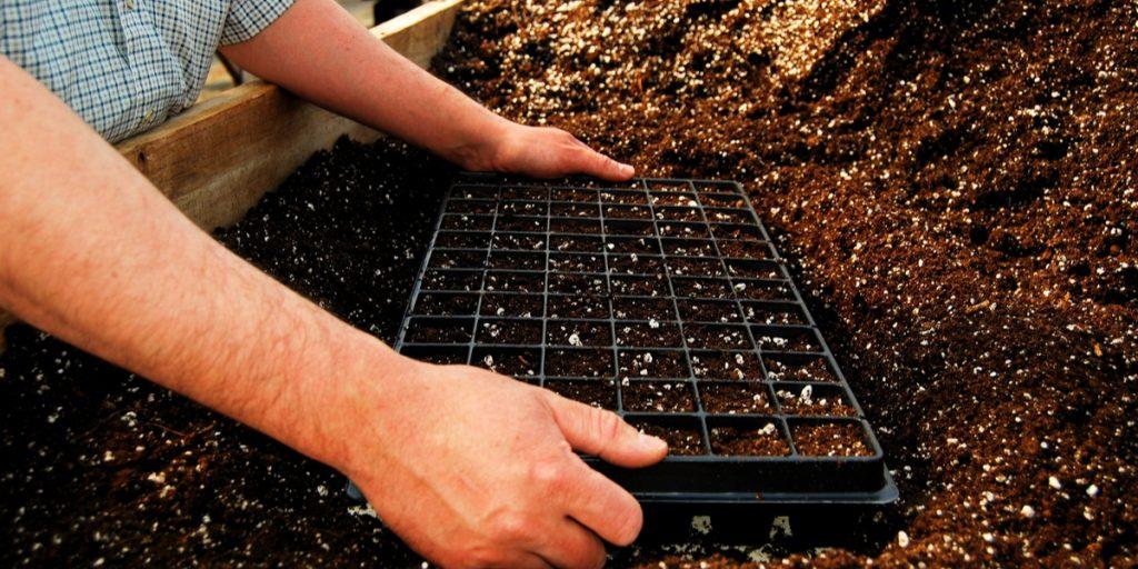 homemade seed starting soil
