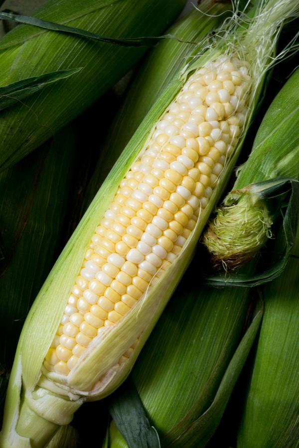how to fertilize sweet corn