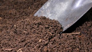 how to use worm castings