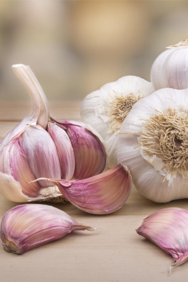 hardneck garlic seed