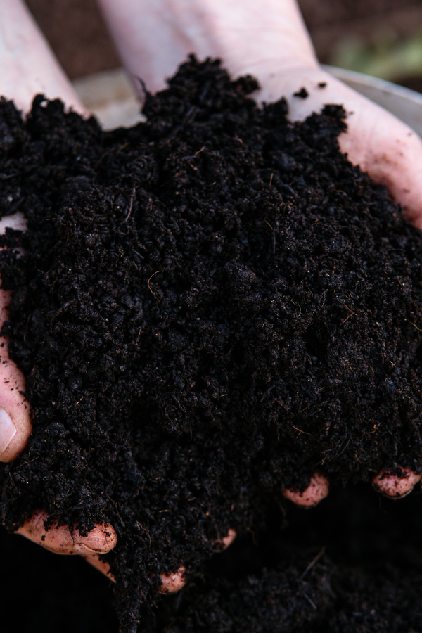 making compost fast