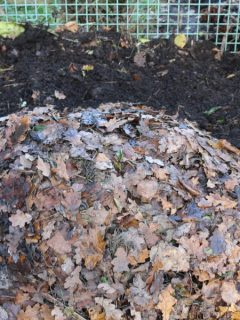how to create a fall compost pile