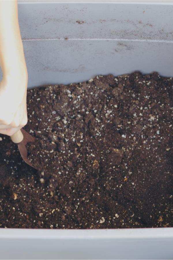 soil recharging bin